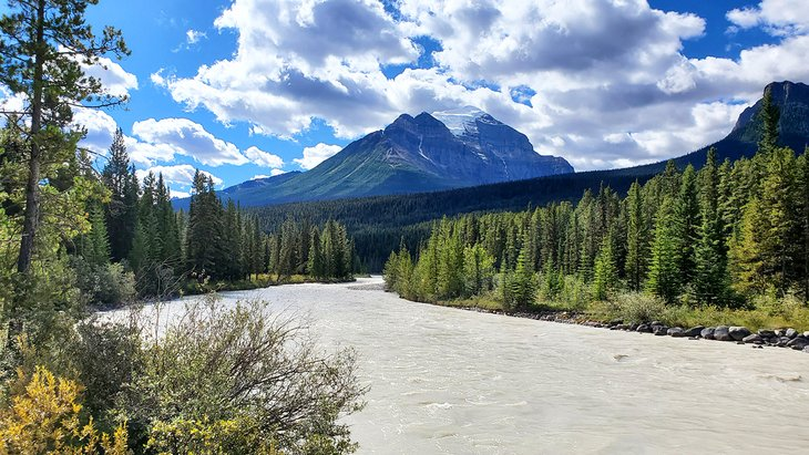 Bow River in Lake Louise Campground
