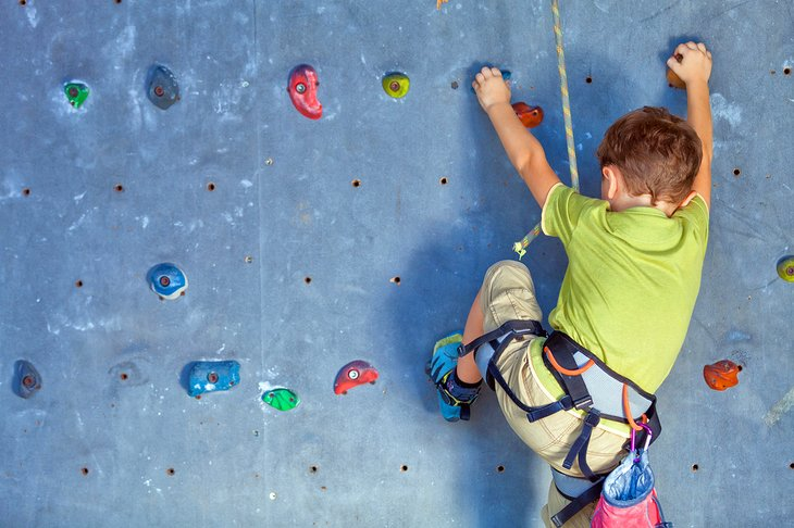 Young climber on the climbing wall