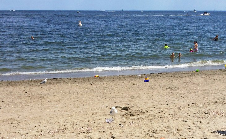 Playa de Jennings