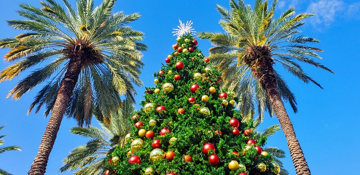 14 Best Christmas Towns in Florida | PlanetWare