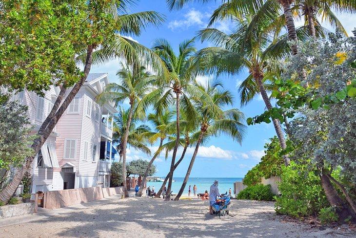 Camino a la playa para perros de Key West