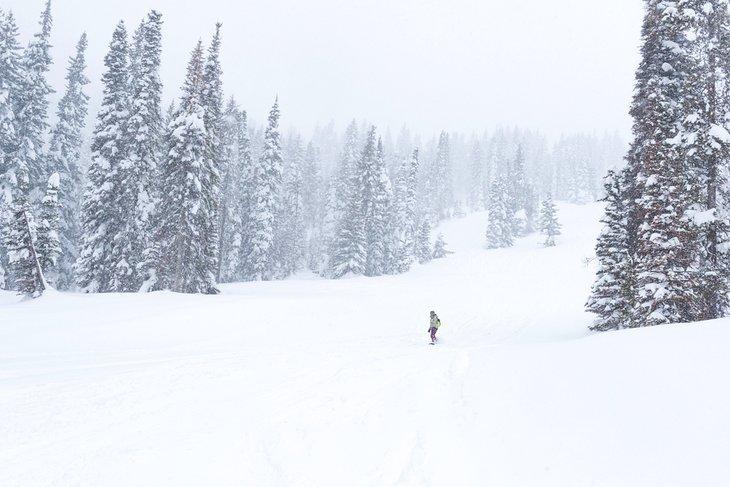Snowboarder en Tamarack Resort