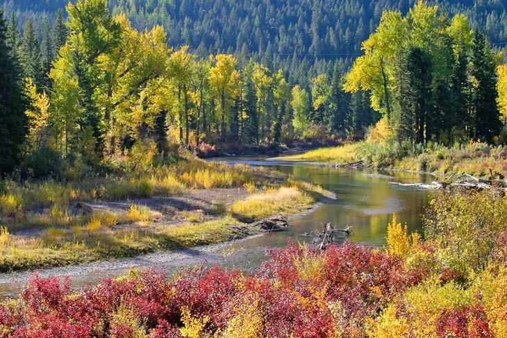 Colores de otoño a lo largo del río Blackfoot