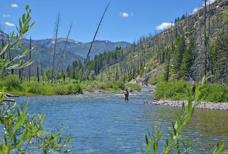 Pesca con mosca en el río South Fork Sun