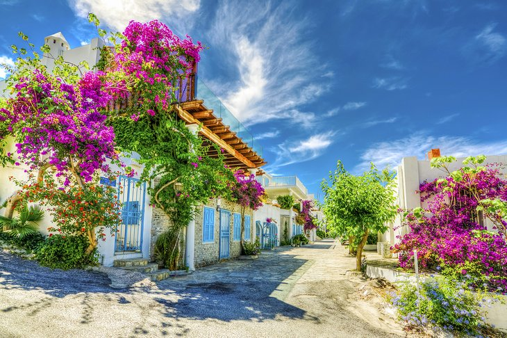 Street view in Bodrum