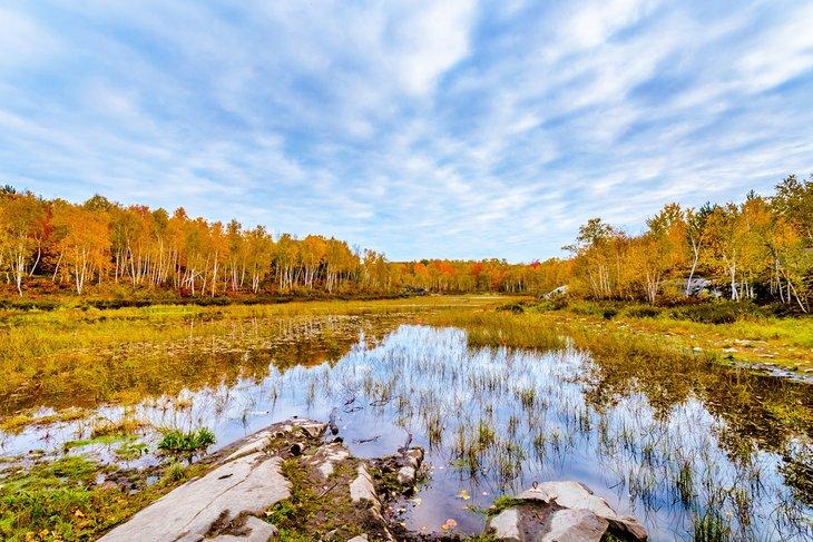 Área de conservación del lago Laurentian
