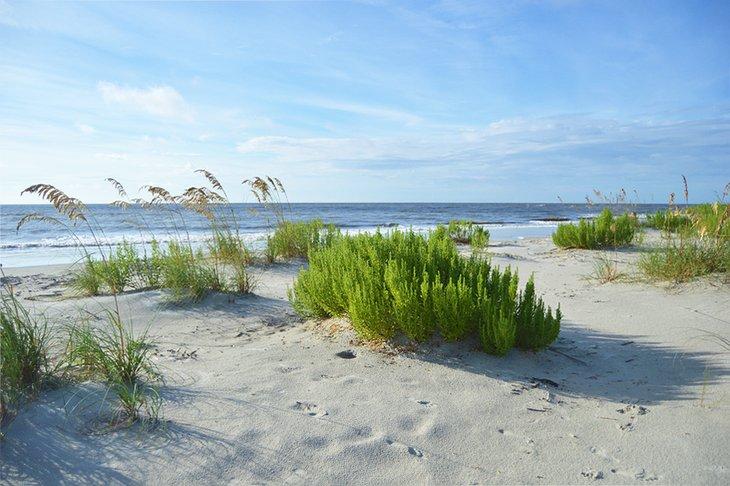 East Beach en la isla de St. Simons