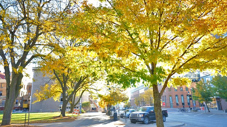 Autumn in downtown Iowa City