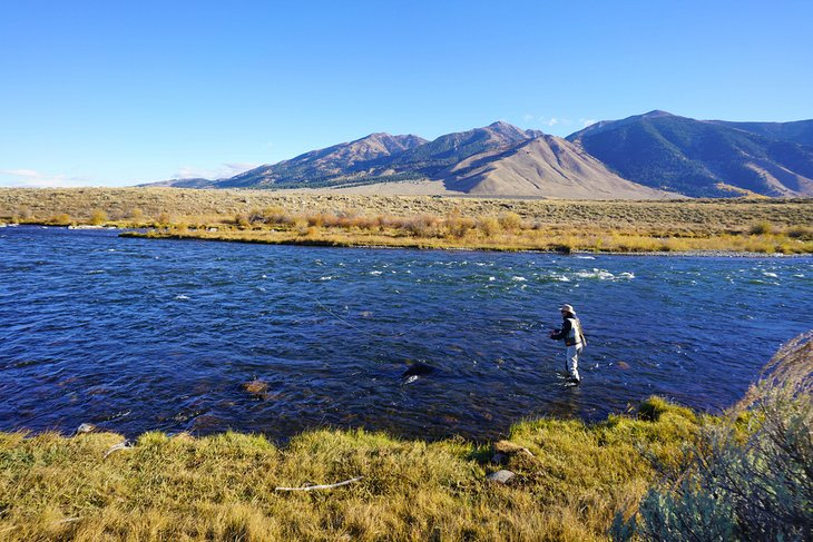 Fly fisherman on the Madison River
