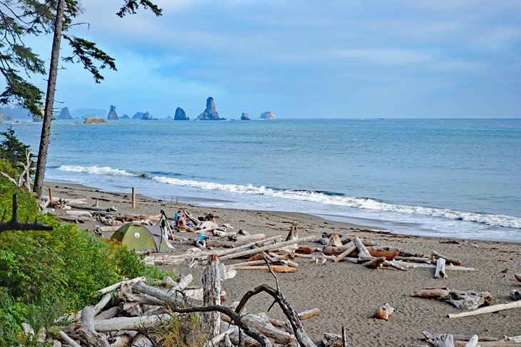 Third Beach, South of Rialto Beach