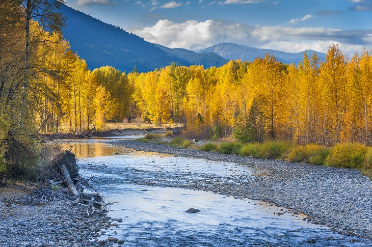 Fall on the Methow River