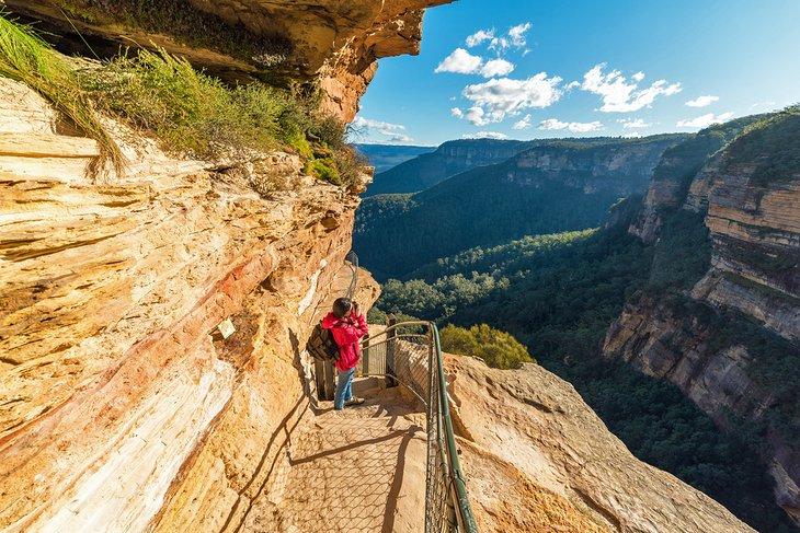 Caminante por un sendero en las Montañas Azules