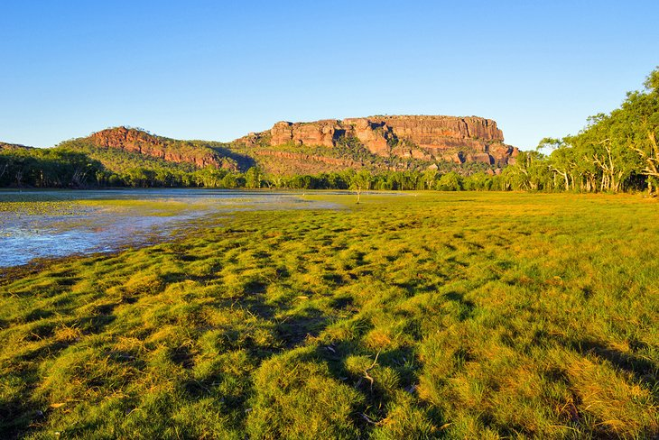 Vistas a Nourlangie desde Anbangbang Billabong, Parque Nacional Kakadu