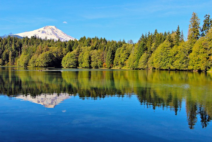 Mount Baker reflected in Baker Lake in the Mt. Baker-Snoqualmie National Forest