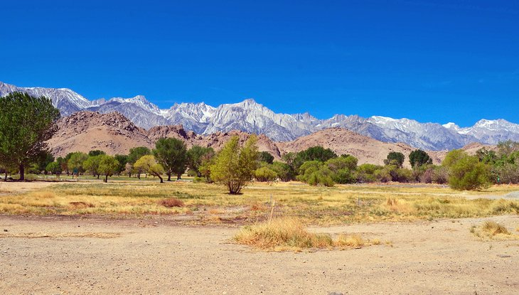 View from the Eastern Sierra Interagency Visitor Center