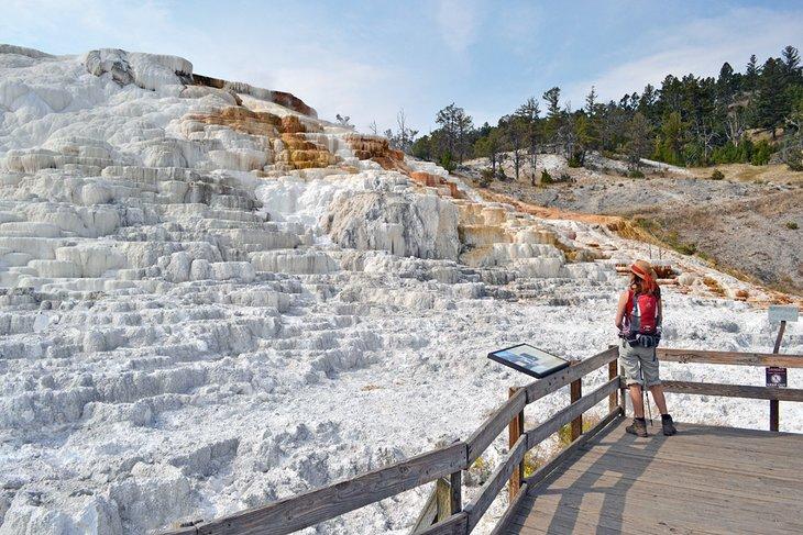 Terraza de travertino en Mammoth Hot Springs