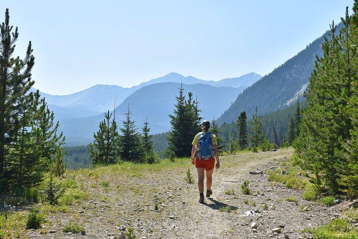 Senderismo en las montañas Pintler, frente a Pintler Scenic Byway