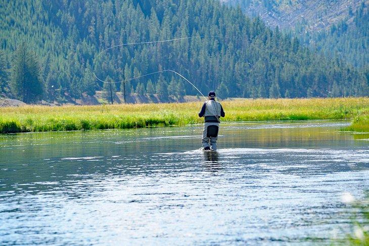 Pescador con mosca en el río Madison