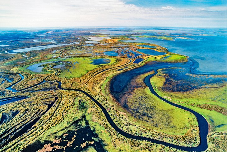 Aerial view of Wood Buffalo National Park