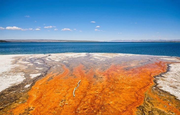 Géiser que desemboca en el lago Yellowstone.