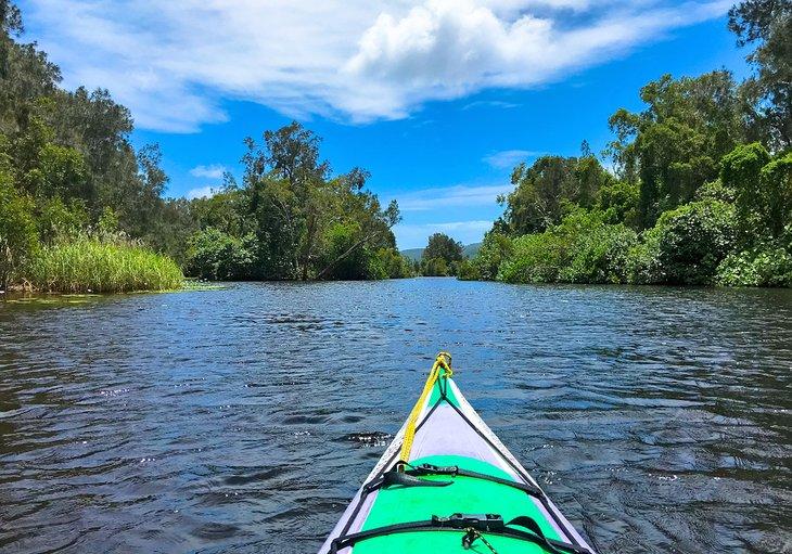 Kayak en el río Upper Noosa