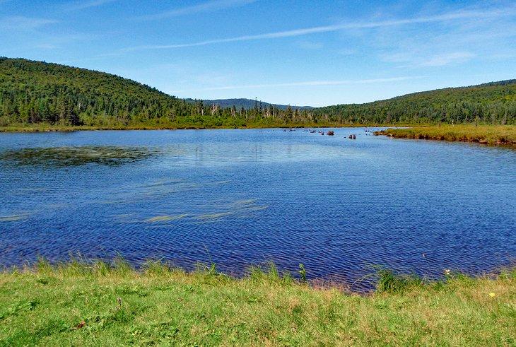 Connecticut Lakes