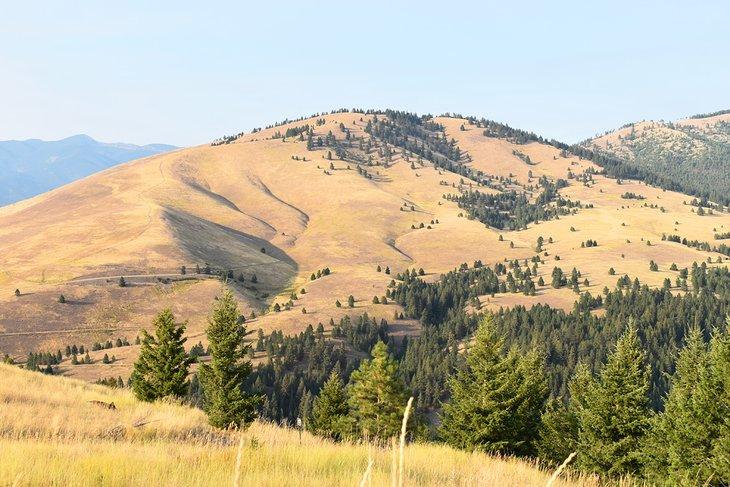 Vista del lado sur del monte Sentinel desde Barmeyer