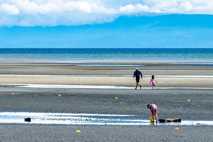 Diversión familiar en la playa de Rathtrevor