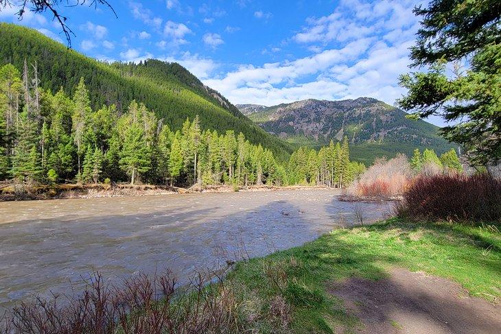 Río Gallatin, junto al camping Greek Creek