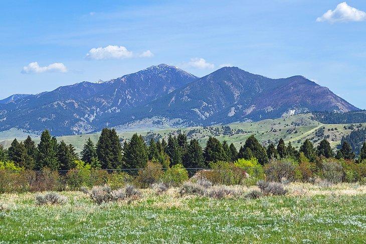 Vista a la montaña desde Burke Park