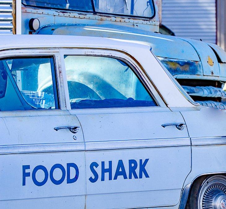 Entrega de comida de tiburón