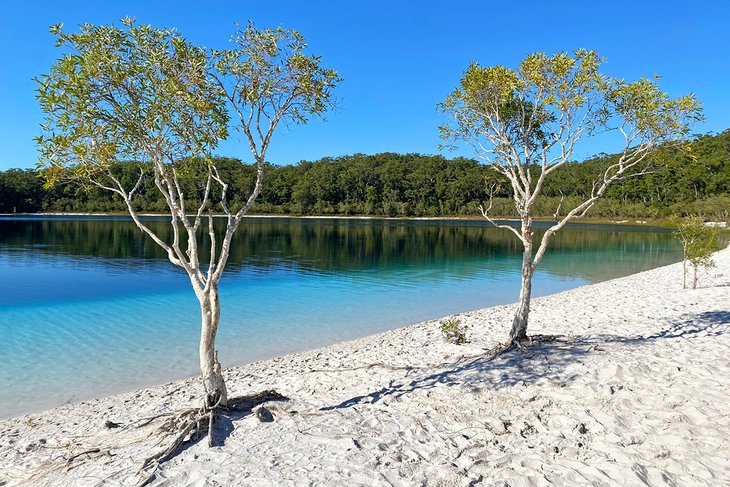 Lake McKenzie in the middle of K'Gari (Fraser Island)