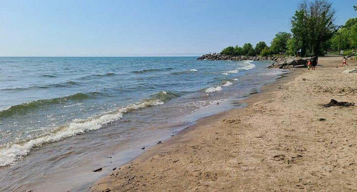 Una playa en Jack Darling Memorial Park